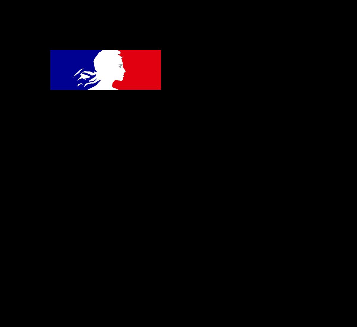 logo Ministère du travail 2020